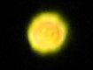 yellowlight1