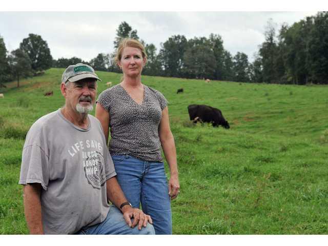 Des mutilations de bétail signalées au nord de la Georgie (USA) 1010cattle2
