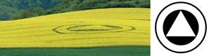 Crop Circle 2010 - Page 3 Zierneberg2010a