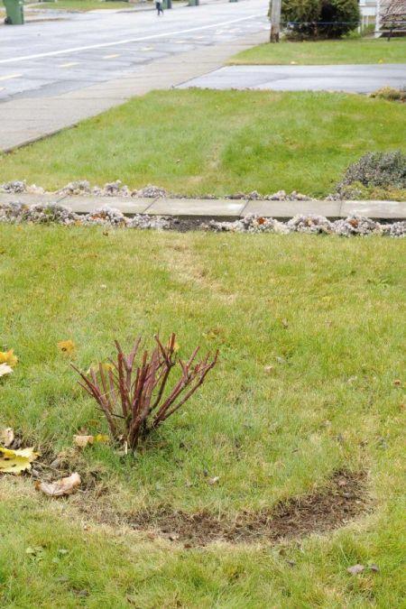 Faits étranges à Drummondville au Québec Photo_1269597_resize