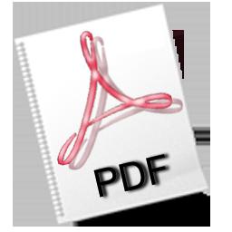 fichier-pdf (1)