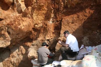 Les spécimens de fossiles de l'espèce peut-être de nouvelles de l'homme ont été découverts en 1989 par des mineurs de carrières de calcaire à Maludong ou Cave Red Deer, près de la ville de Mengzi au sud-ouest de la Chine. Ils sont restés peu étudiés jusqu'en 2008. On voit ici, Darren Curnoe (à droite) et Andy Herries (à gauche) des fouilles à Maludong en 2008.CREDIT: Darren Curnoe
