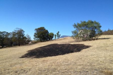 Photo: A burnt circle of grass where a bright light reportedly fell from the sky and started a small fire. Read the story (ABC News: Fiona Blackwood)