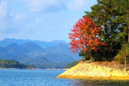 Autumn at Qiandao Lake. Source:Photo #19 by Patrick He