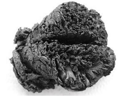 Le cerveau découvert par les archéologues en 2010. Erwan Lecomte Par Erwan Lecomte Sciences & Avenir