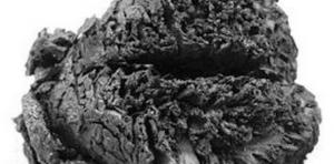 Des chercheurs turcs sont parvenus à expliquer l'incroyable état de conservation d'un cerveau vieux de 4000 ans. DR Par Erwan Lecomte Sciences & Aveni