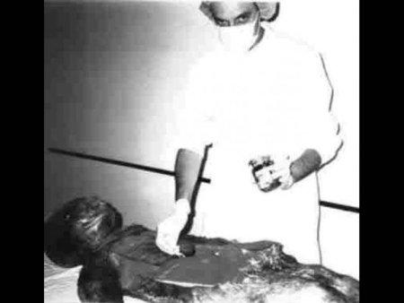 autopsija-vanzemaljac-u-vojnoj-bolnici-jna-1376328111-351701