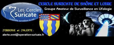 suricate cercle 71 affiche
