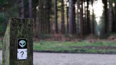 Today, the Rendlesham Forest incident is remembered with the park's 'UFO Trail' (Credit: Clynt Garnham/Alamy)